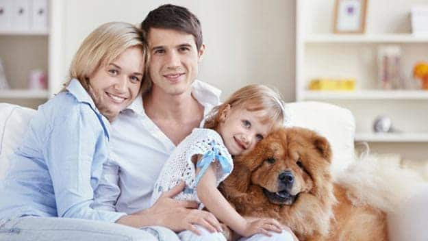 Wills & Trusts dog-young-family Direct Wills Witley